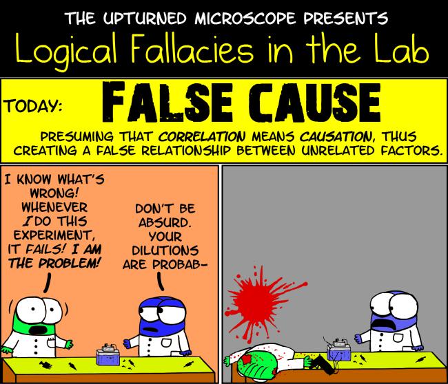 fallacies examples