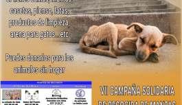 RECTA FINAL DE LA CAMPAÑA DE RECOGIDA DE MANTAS Y ENSERES PARA LAS PROTECTORAS