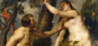 How an Evangelical Creationist Came to Accept Evolution
