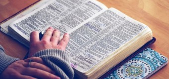 Americans Are Fond of the Bible, But Don't Actually Read It