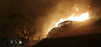 Portugal Wildfires Kill at Least 35; 4 Dead in Spain
