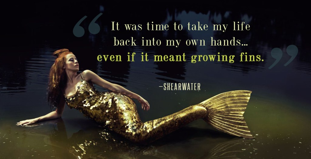 shearwater-quote