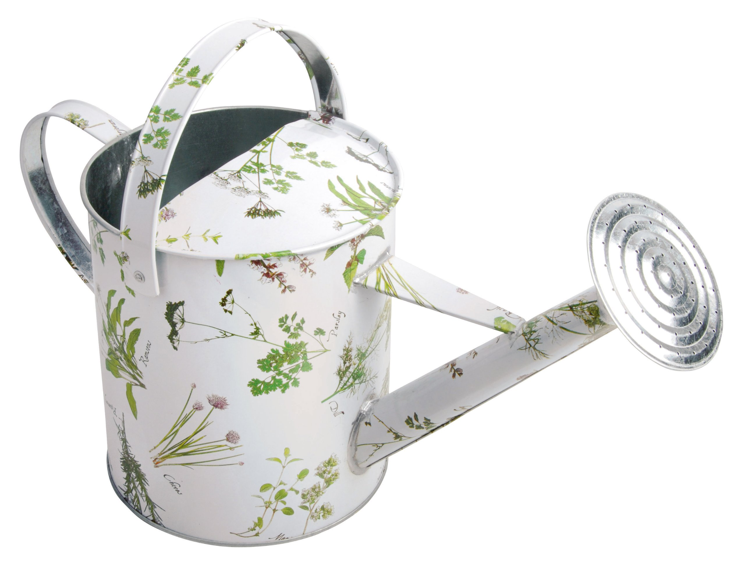 Metal Indoor Watering Can Vintage Watering Cans A Whimsical Guide Urban Turnip