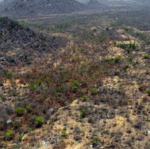 Sambisa forest aerial view