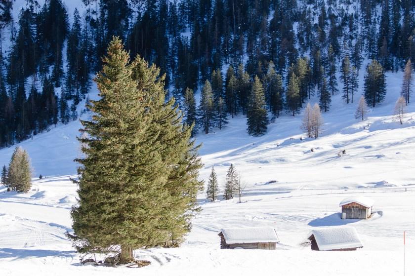 skifahren-in-brand-09