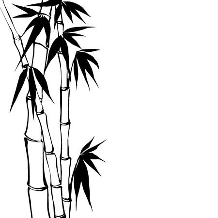 Bamboo line drawing illustrations Pinterest Illustrations - cover letter for substitute teacher