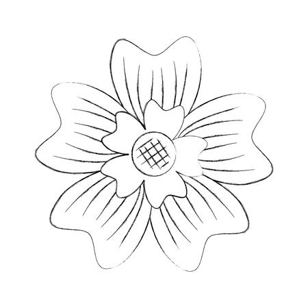 Vinca Floral Diagram Wiring Diagram