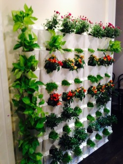 Small Of Vertical Gardens Walls