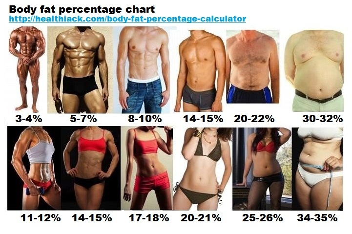 Body fat percentage chart/graphic? \u2014 MyFitnessPal - body fat chart