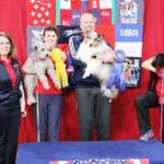 Round 2 - Medium Dog Winners - from left to Rt Karen Beattie Massey & Bella (Pumi) John Nys & Rush (Shetland Sheepdog) Deb Shulman & Spencer (Poodle)