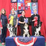 Round 4 JWW - Large Dog Winners 1st place Rosanne DeMascio and BC, Strafe 2nd place Desiree Snelleman and BC, Pace 3rd place Silvina Bruera and BC, Tcam