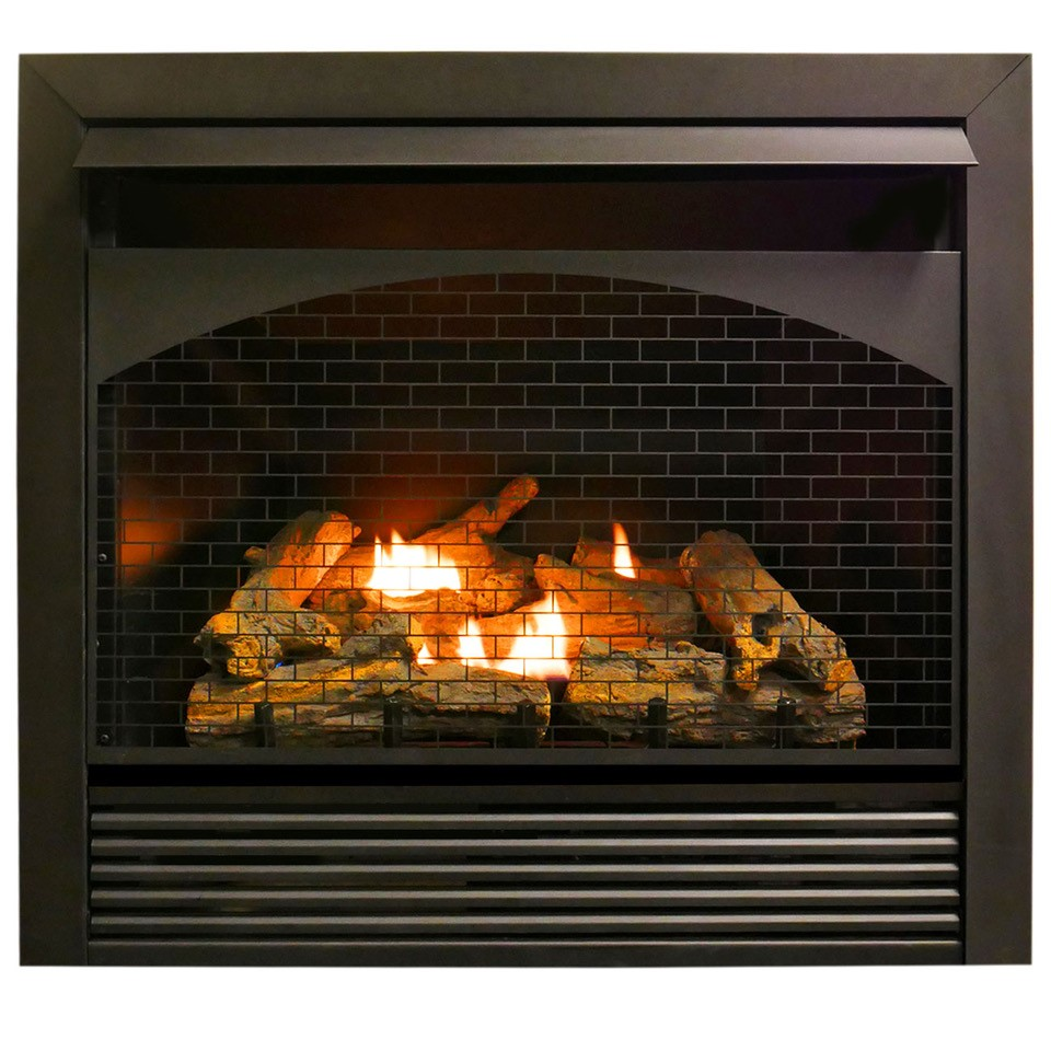 Btu Gas Fireplace Gas Fireplace Insert Dual Fuel Technology With Remote Control 32 000 Btu Fbnsd32rt