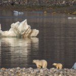 Circumnavigating the Realm of the Polar Bears