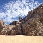 Baja California and the Sea of Cortez: Among the Great Whales