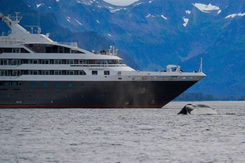 Alaska ship fluke