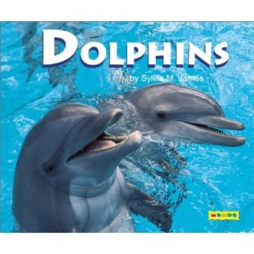 Cute Piglets Wallpaper Aquatic Animals List A Z