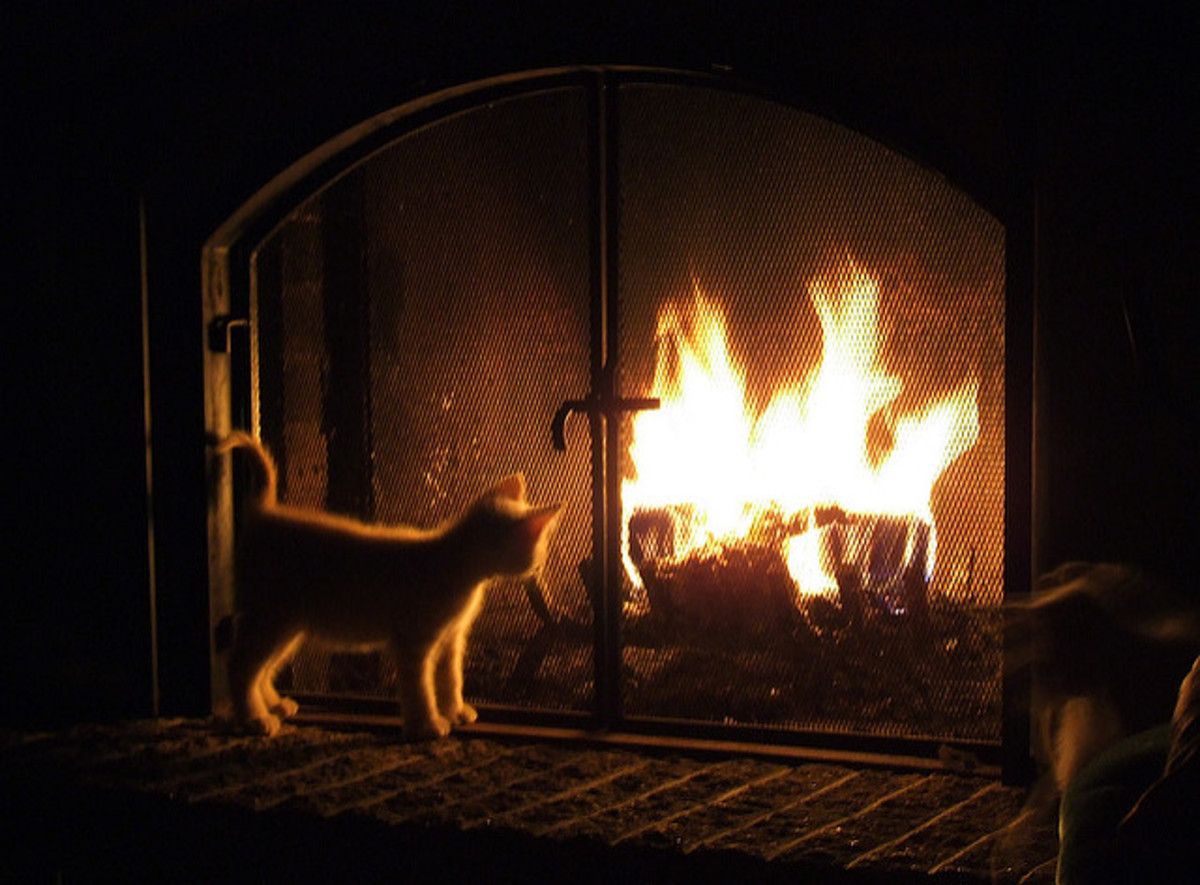 Electric Corner Fireplace What You Need To Know Dengarden
