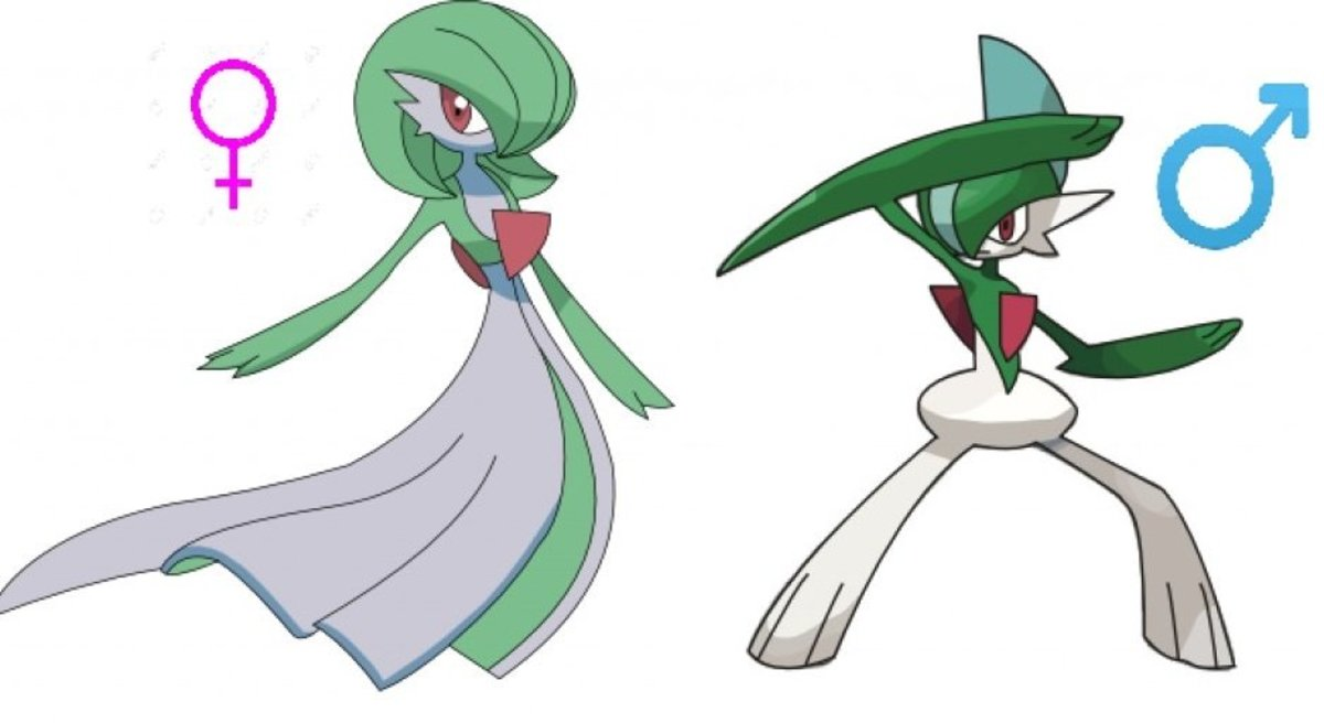 Everything You Need to Know About Pokemon Genders LevelSkip