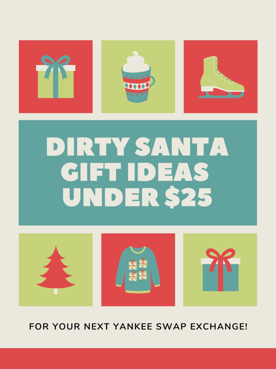25 Dirty Santa Gift Ideas Under $25 Holidappy