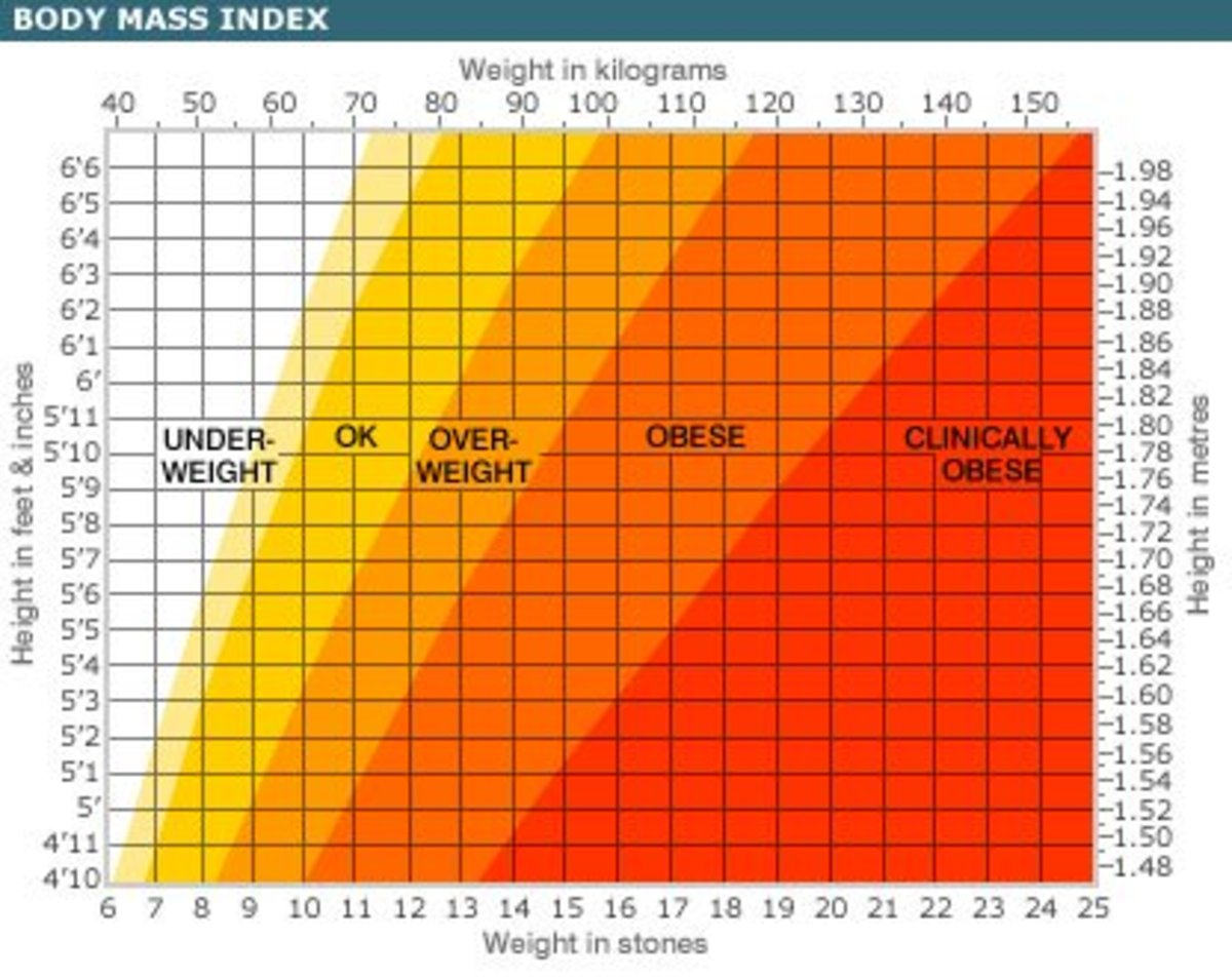 How to Calculate BMI Are You Overweight? CalorieBee