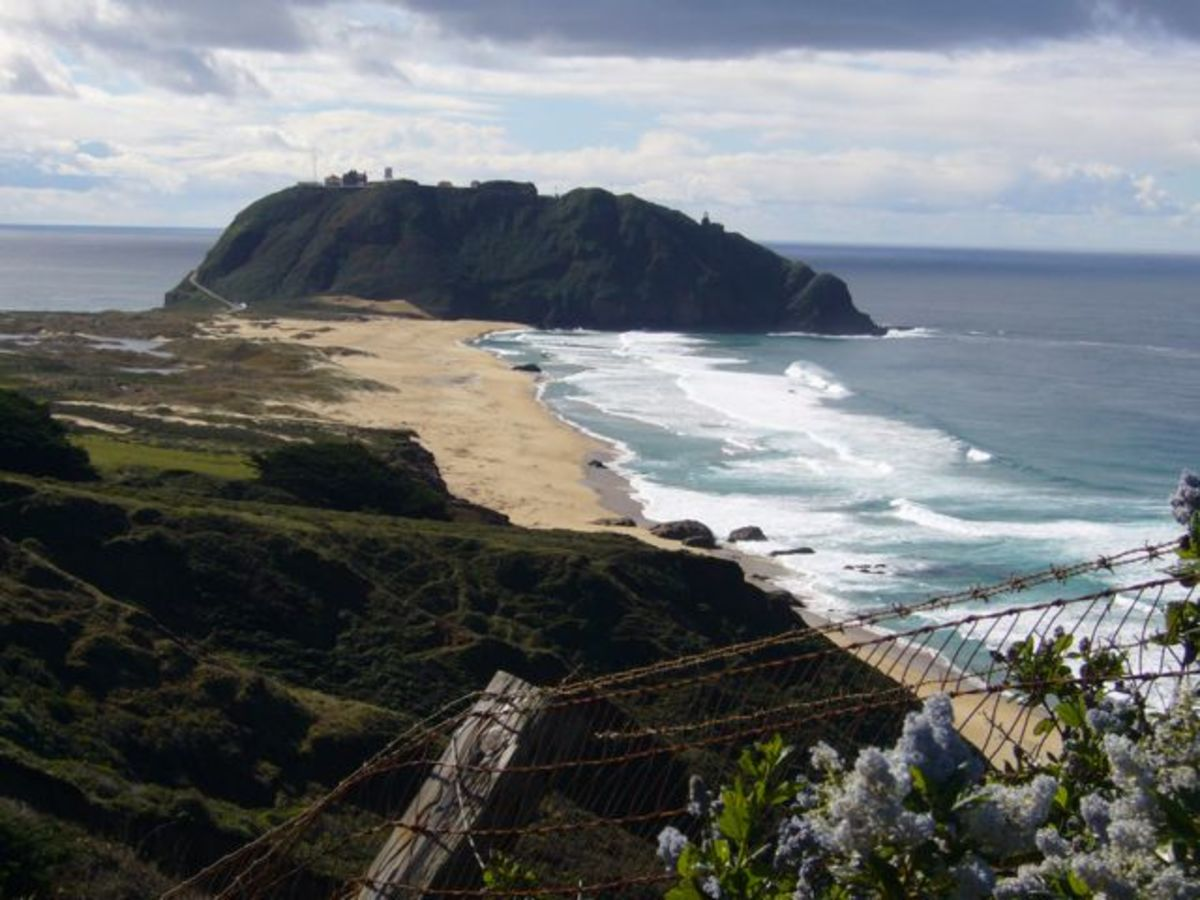 Best Highway 1 Road Trip San Francisco to Big Sur With Photos and