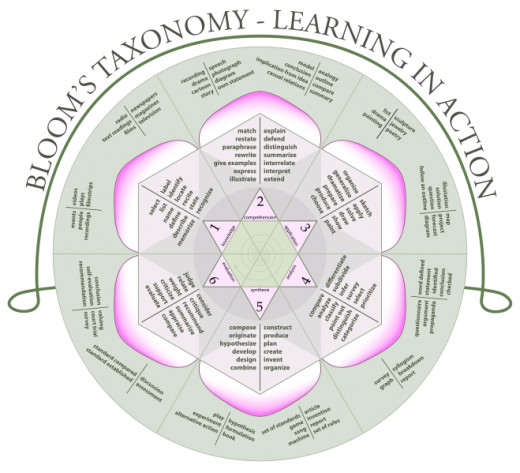 What is the Importance of Studying Bloom\u0027s Taxonomy of the Cognitive