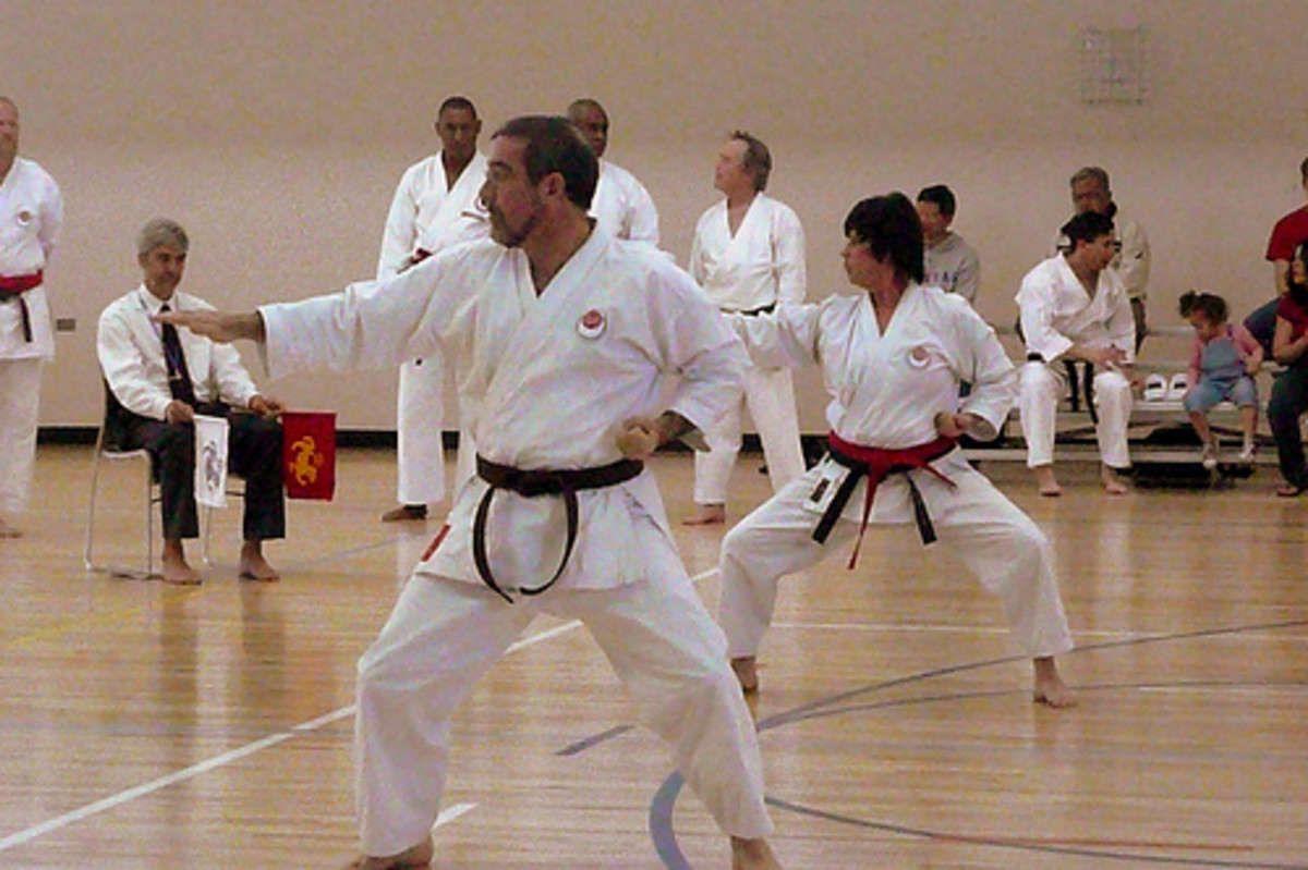 Differences Between Karate  Tae Kwon Do, A Crucial In-Depth