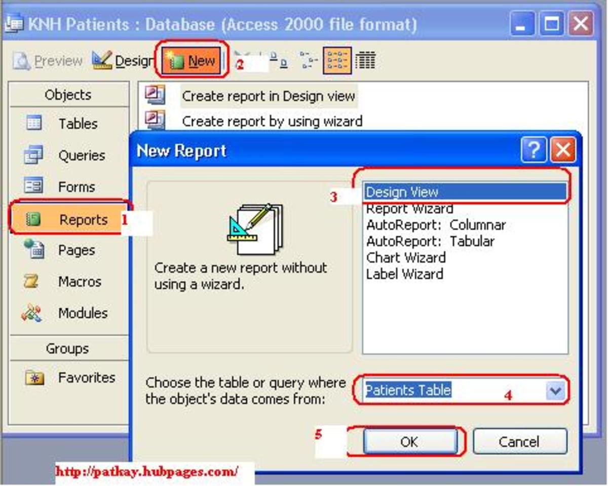 How to Create Reports Using Microsoft Office Access 2003 HubPages