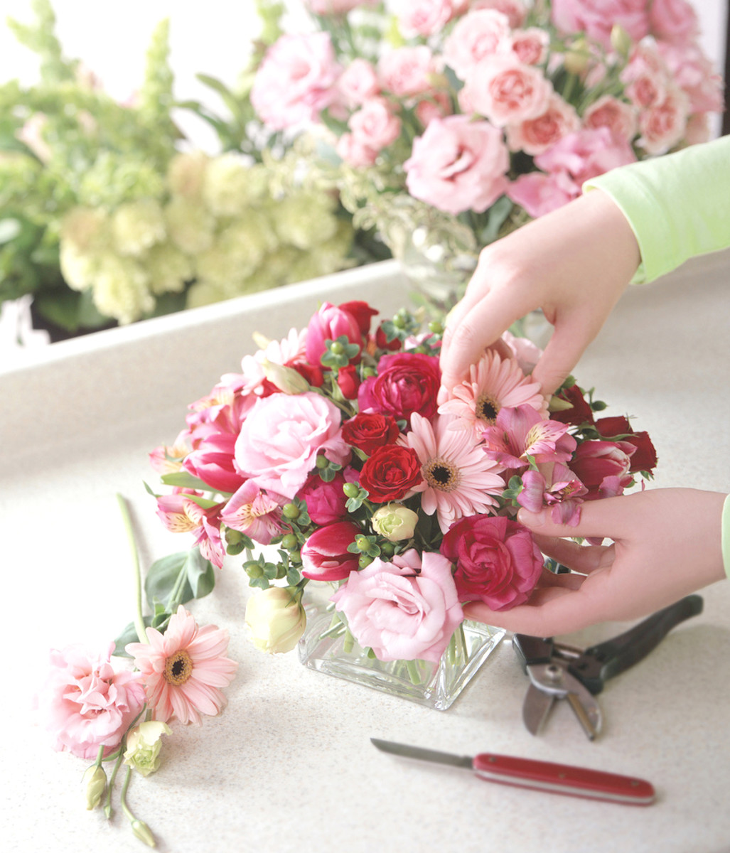 50 Creative Florist and Flower Shop Names ToughNickel
