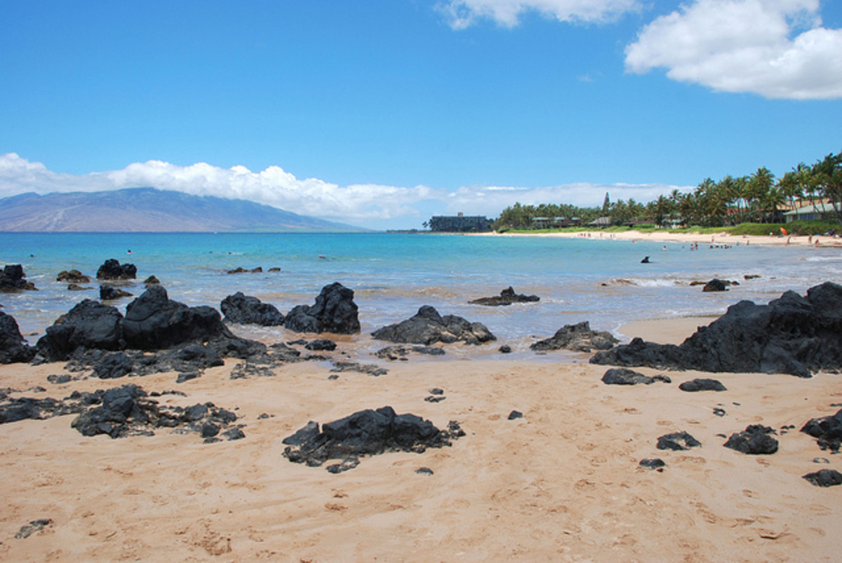 What You Need To Know Before Booking Your Maui Vacation WanderWisdom