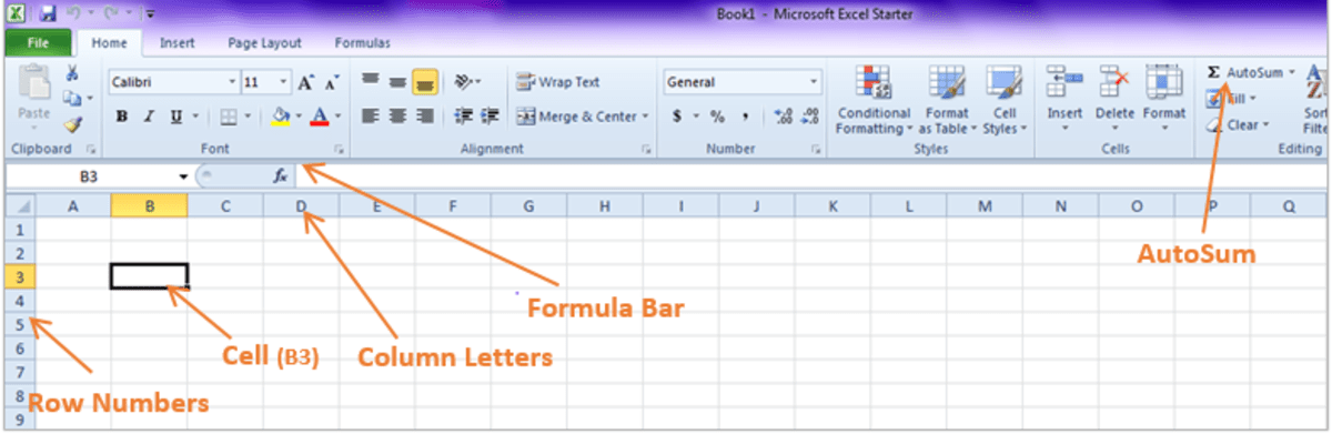 Analyzing Survey Data in Microsoft Excel Coding, Inputting Data