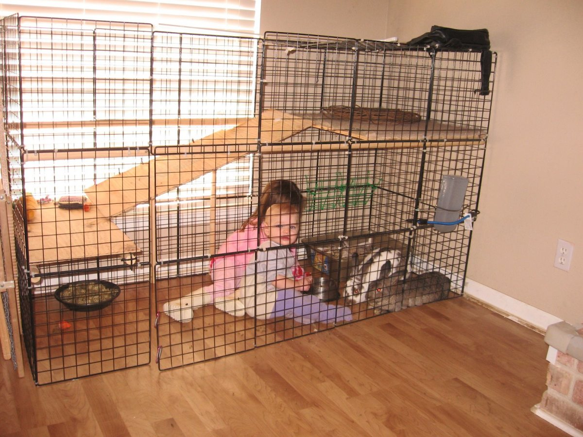 Diy Cage For Rabbit The Best Bunny Cage For Your Rabbit