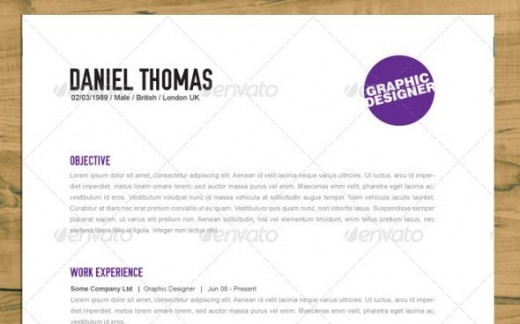 2013 Best Resume Templates, Samples and Tips to Help You Land the - great looking resumes