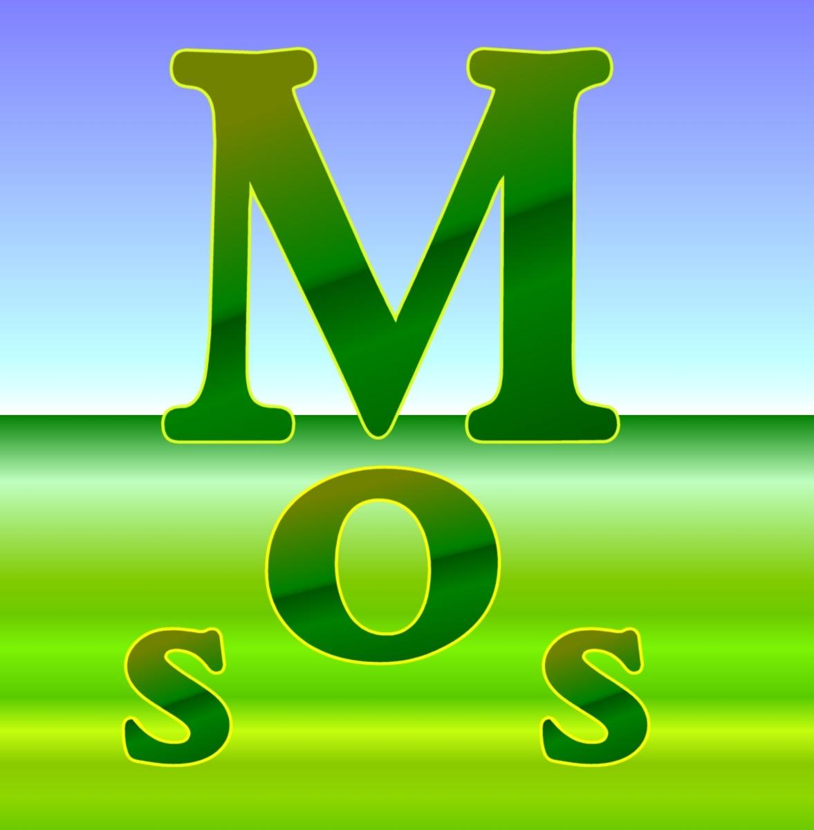 Fullsize Of How To Kill Moss
