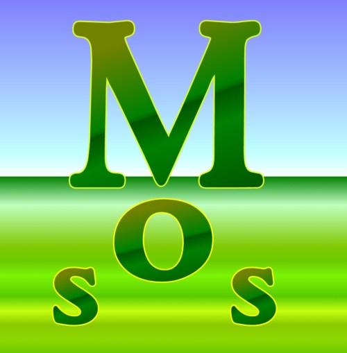 Medium Of How To Kill Moss