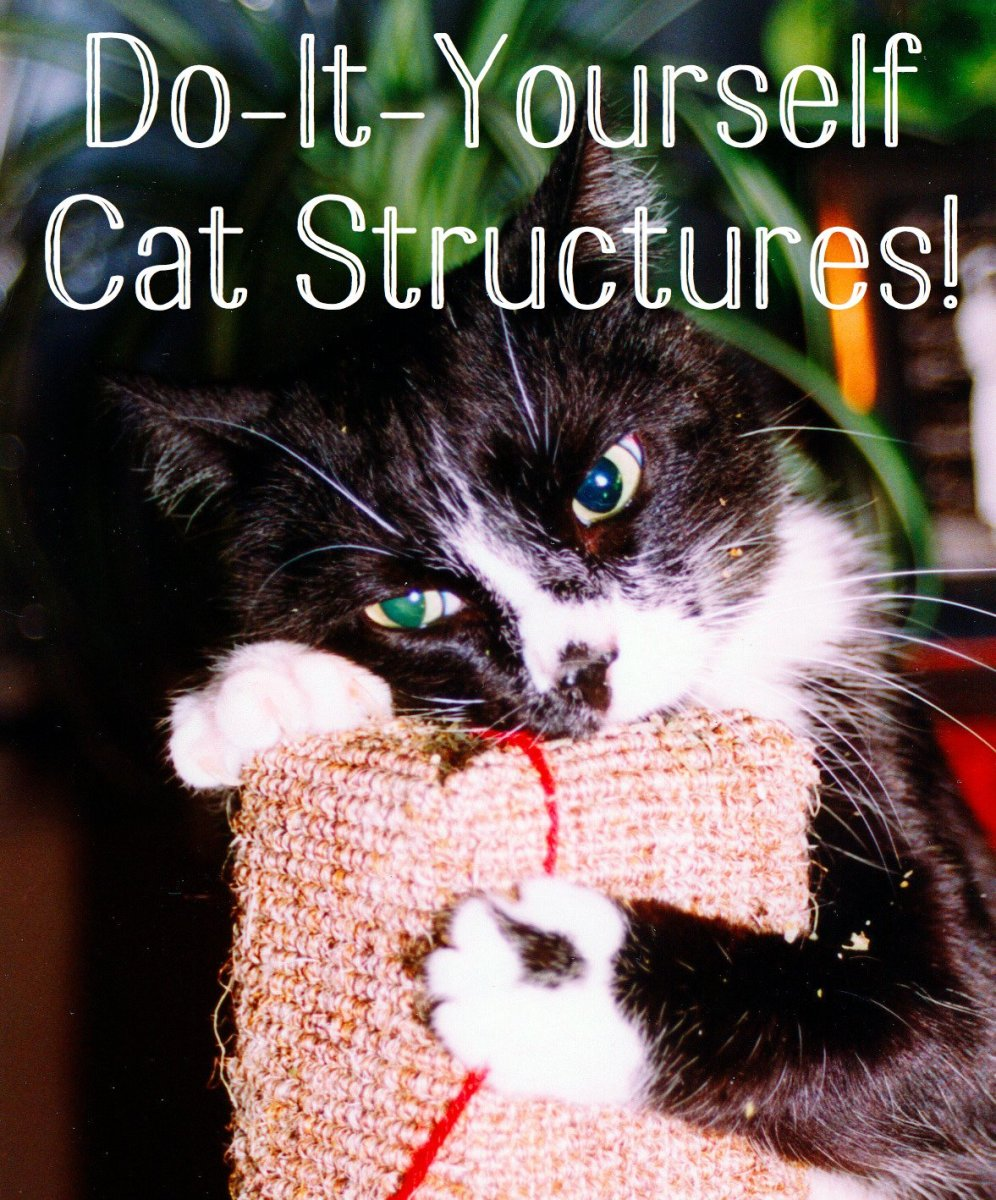 Pretty Cat Furniture Make Your Own Cat Trees Towers And Other Structures Pethelpful