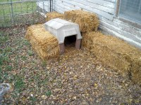 Make Your Own Homemade Dog House | HubPages