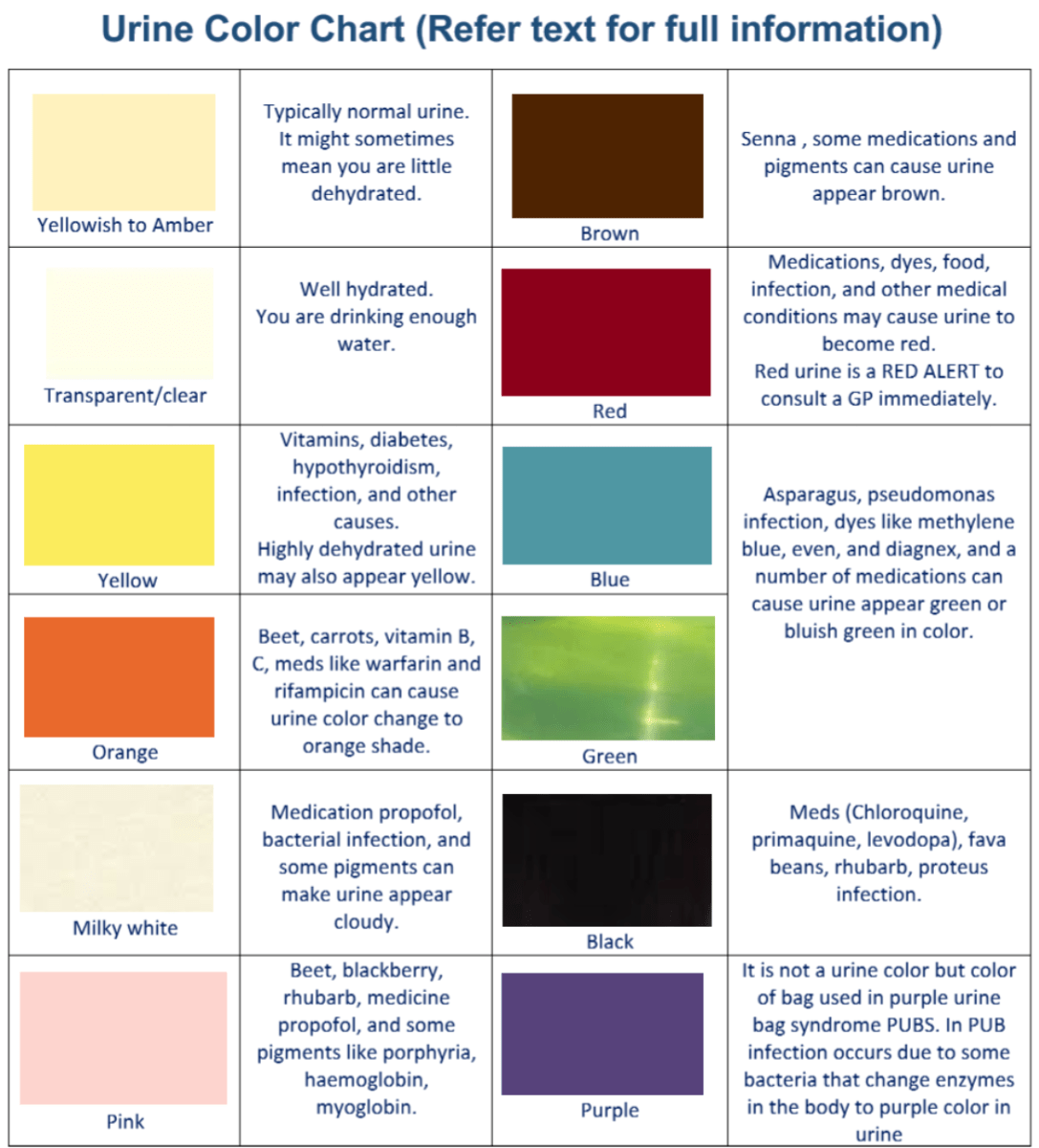 Urine Colors Chart  Medications and Food Can Change Urine Color