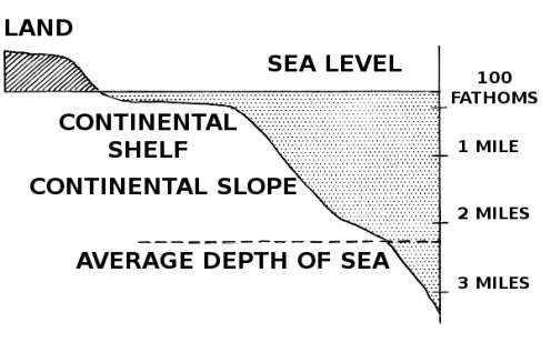 Top 10 Interesting and Fun Facts About the Ocean Floor HubPages