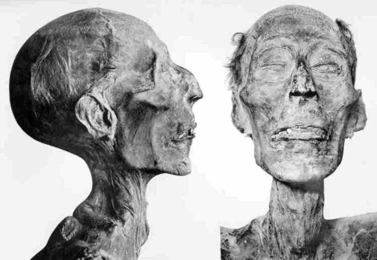 World39s Best Preserved Mummies Owlcation