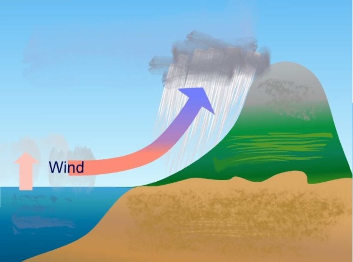 The Water Cycle and The Three Different Types of Rainfall and