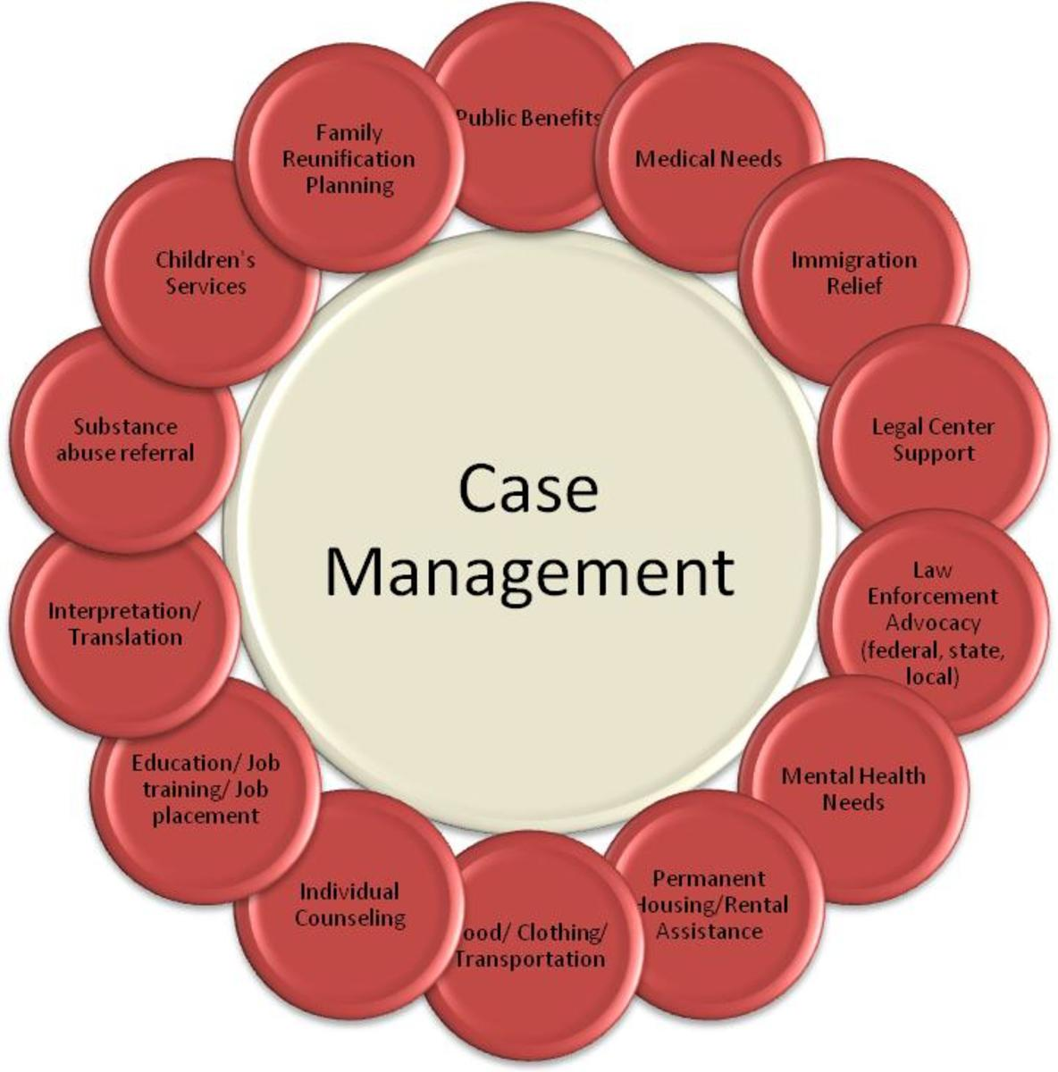 Case Management 101 The Basics HealDove