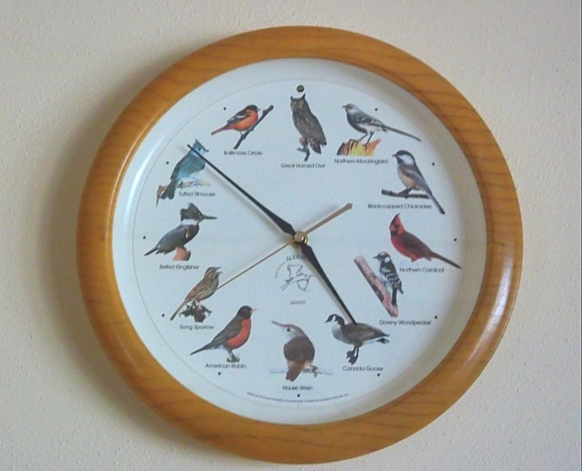 Birdhouse Clock Easy Instructions For Resetting A Singing Bird Clock