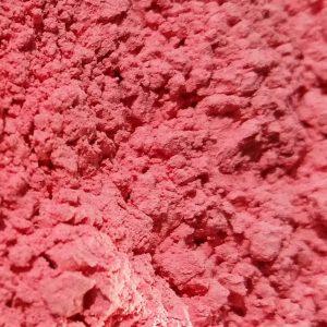 1352 - Rose Red