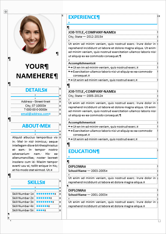 elegant cv word template