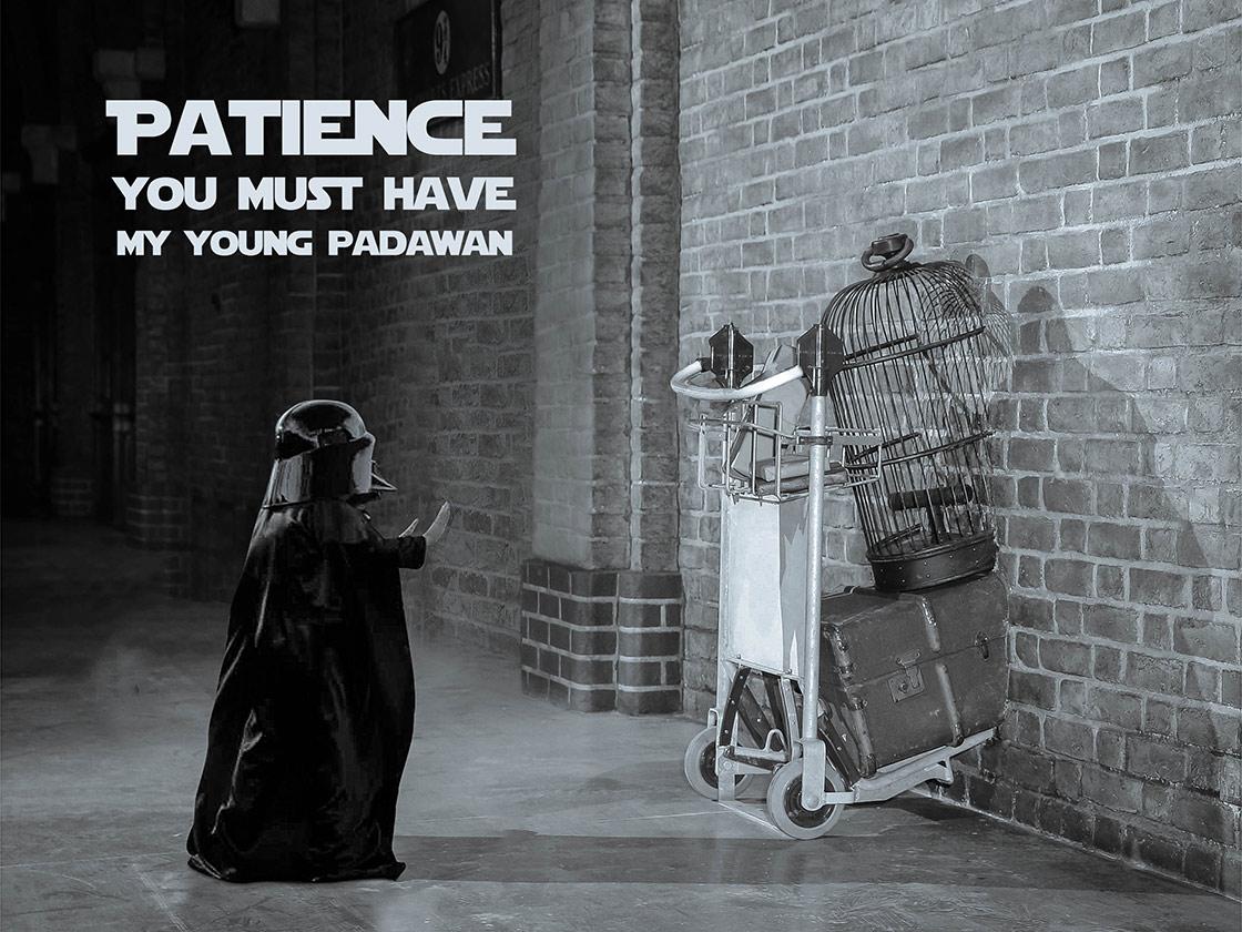 Fullsize Of Patience Young Padawan