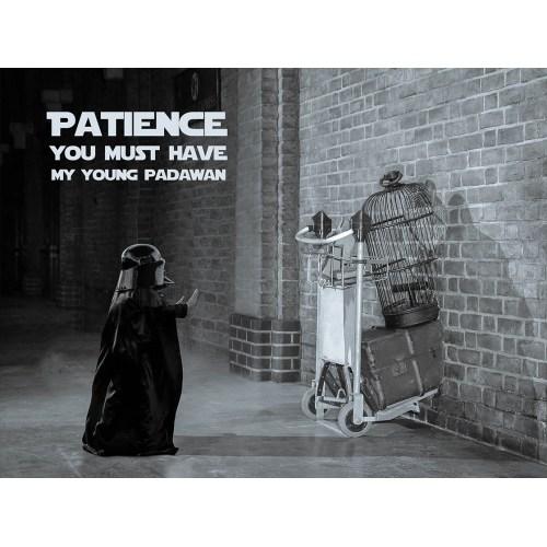Medium Crop Of Patience Young Padawan