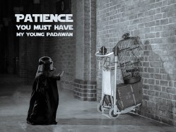 Small Of Patience Young Padawan