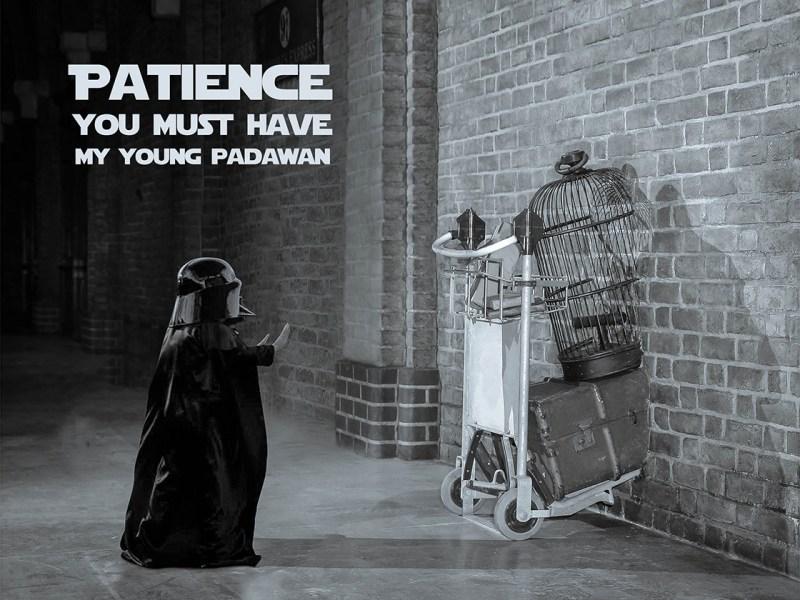 Large Of Patience Young Padawan