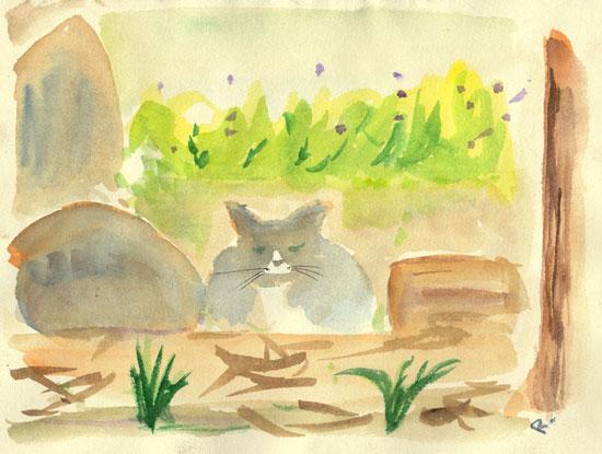 yardcat